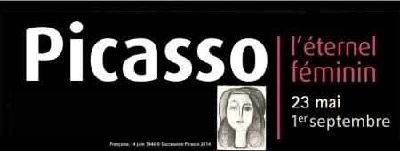 Picasso_bandeau